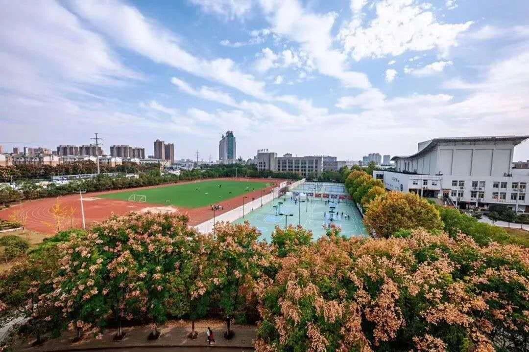 武汉设计工程学院关于调整2020年艺