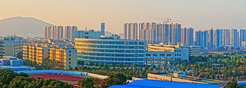 武汉工程科技学院2020年艺术类招生简章
