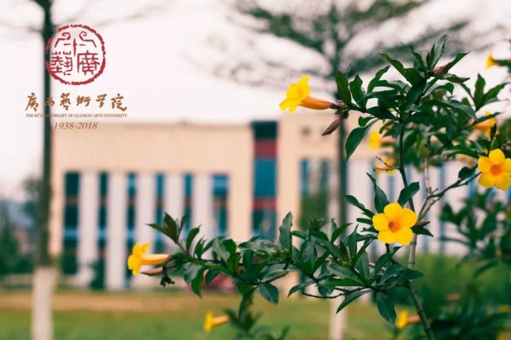 广西艺术学院关于2020年本科艺术类