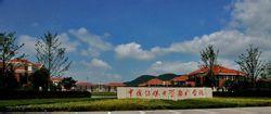 中国传媒大学南广学院2020年艺术类