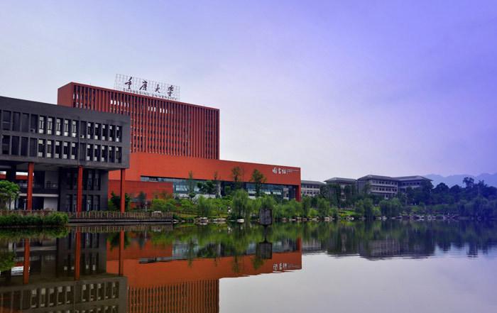 重庆大学2020年艺术类(表演、播音与主持艺术专业)